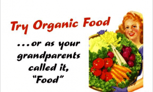 organic_food11