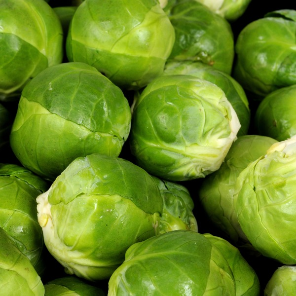 BRUSSELS SPROUTS OG BULK P 10 LBS