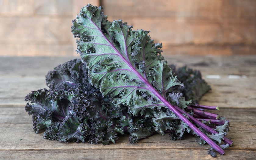 KALE RED OG BULK P 24 CT