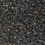 SESAME BLACK OG BULK 25 LBS